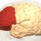 Una visione evoluta per le Neuroscienze