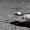 La missione lunare cinese Chang'e 4